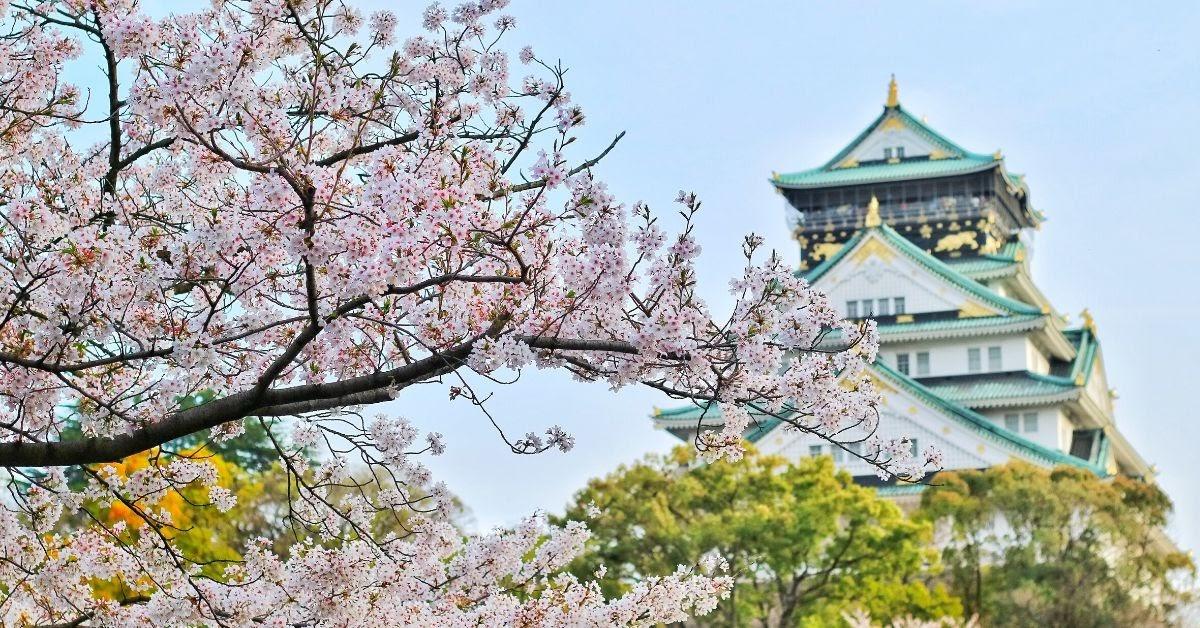 Teaching English Abroad Teach English in Asia Teach English in Japan